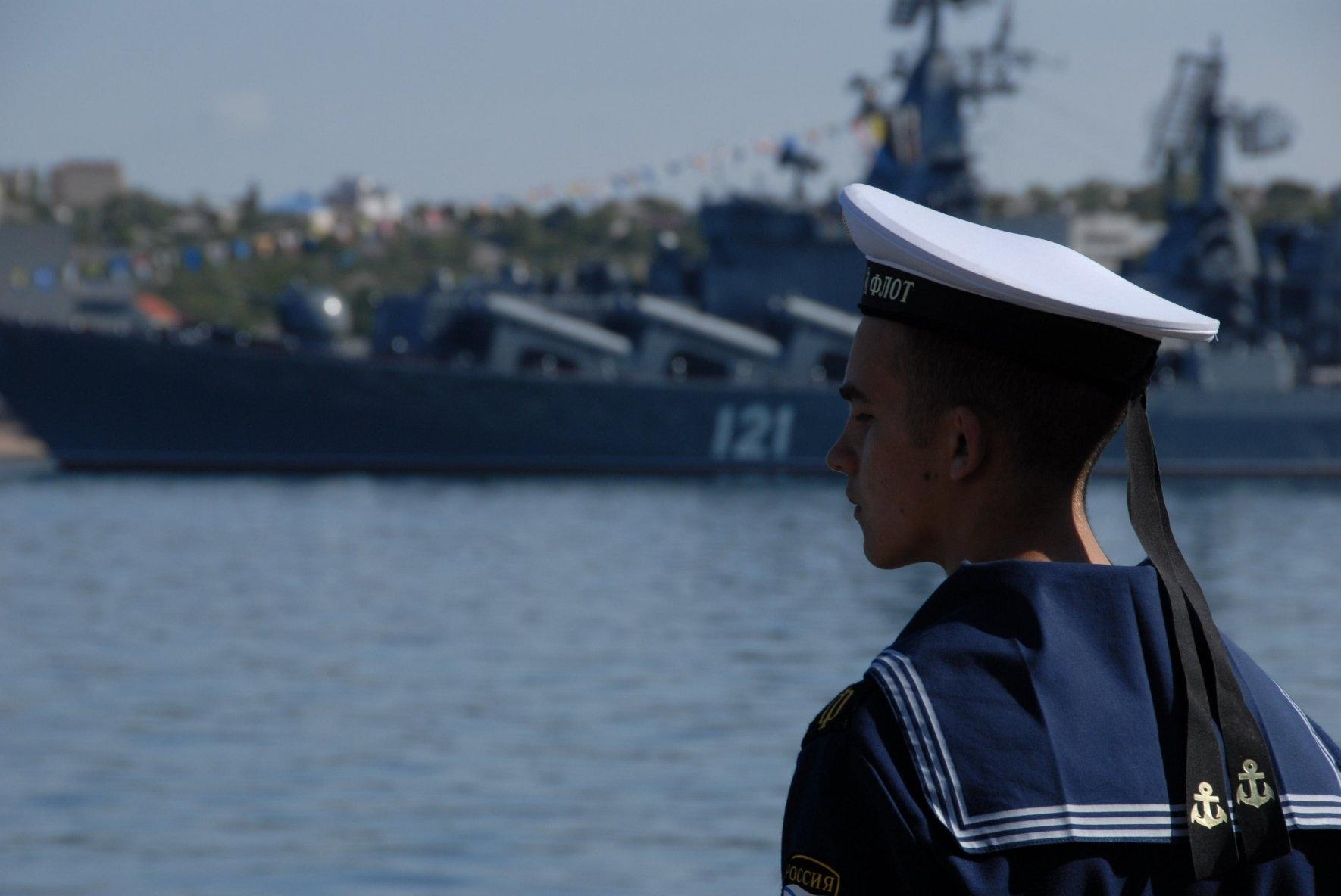 Морские обитатели черного моря фото стиле