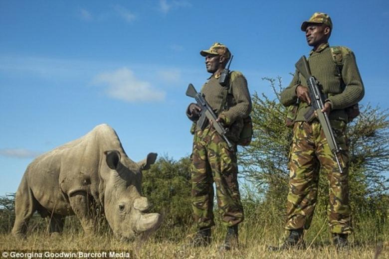 мнения фото охрана животных удобрениями