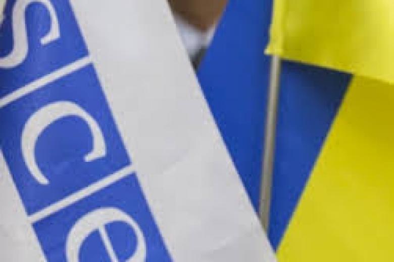 ВОБСЕ назвали демократичным 2-ой тур местных выборов вУкраине