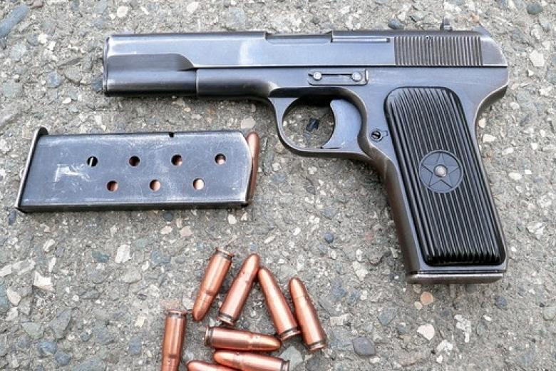 Правоохранители немогут найти пистолет, изкоторого застрелили полицейских