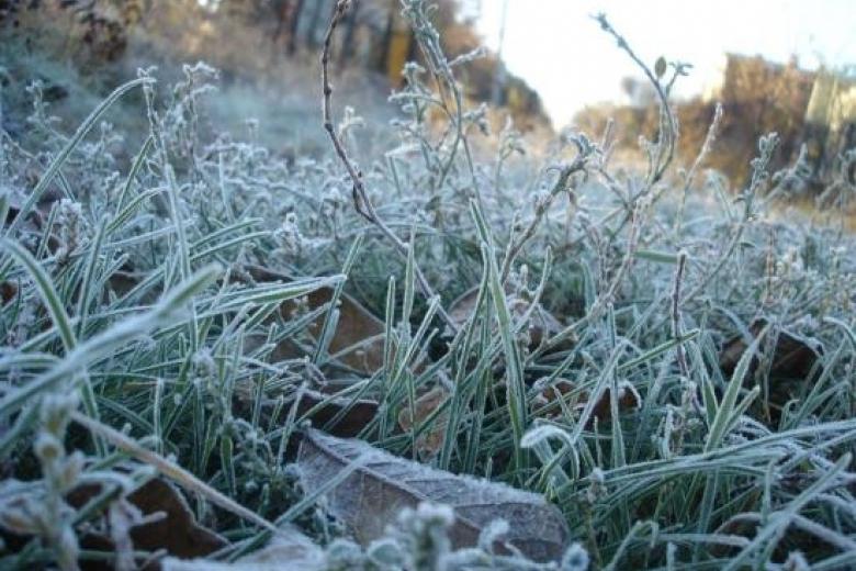 НаПасху вгосударстве Украина предполагается прохладная идождливая погода