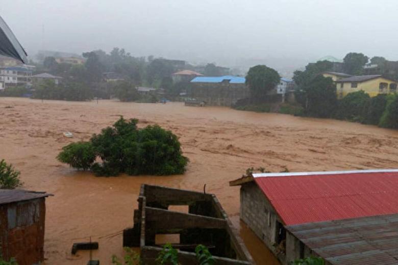 При сходе оползня вСьерра-Леоне погибли неменее 200 человек
