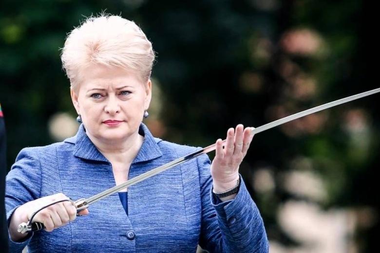 Грибаускайте обвинила Российскую Федерацию вотработке сценариев нападения насоседей
